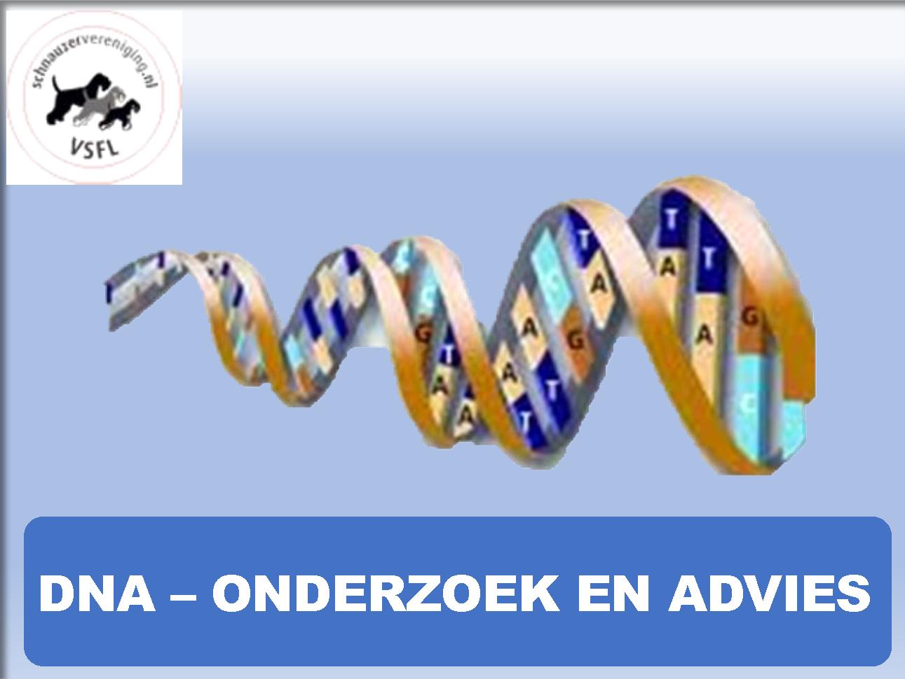 DNA-Onderzoek-en-Advies VSFL